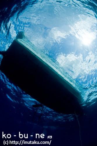 海の中から見上げたダイビングボート