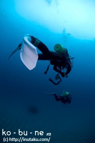 海原をいくダイバー