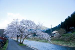 inutaku.com_20130315